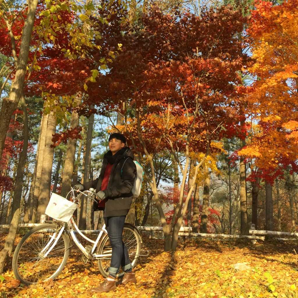 Korean Autumn