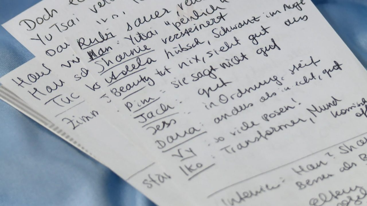 A page in Mia's diary (in German) in AsNTM Cycle 6 Episode 2